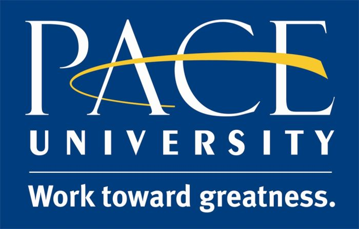 A Profile of our Partners: Pace University