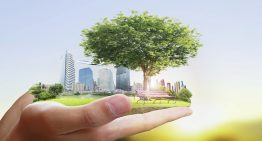 Sustainability: the Future of Business