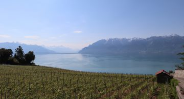 The Fête des Vignerons: Once-in-a-Generation Swiss Wine Festival Opens in Vevey