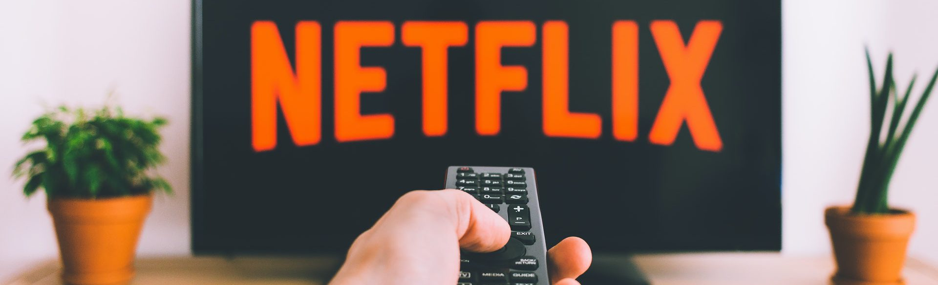 streaming platforms subtitles